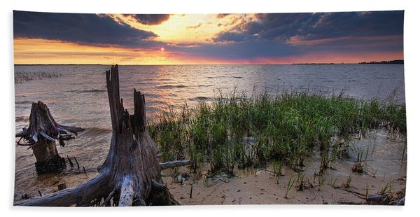 Stumps And Sunset On Oyster Bay Beach Towel