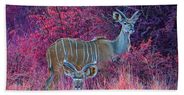 Styled Environment- Modern Kudus Beach Towel