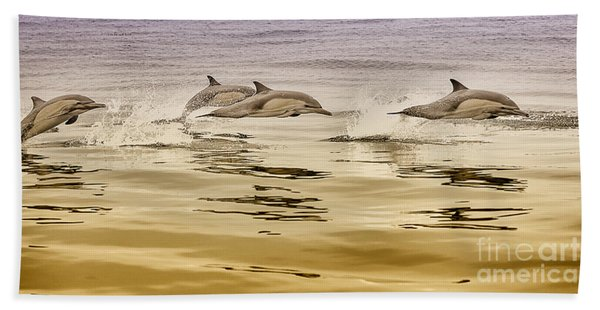 Beach Towel featuring the photograph Dolphin Canvas Print, Photographic Print, Art Print, Framed Print, Greeting Card, Iphone Case, by David Millenheft
