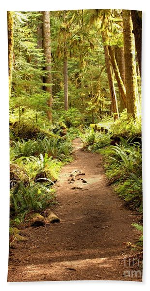 Trail Through The Rainforest Beach Towel