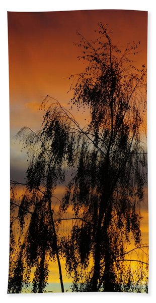 Trees In The Sunset Beach Sheet