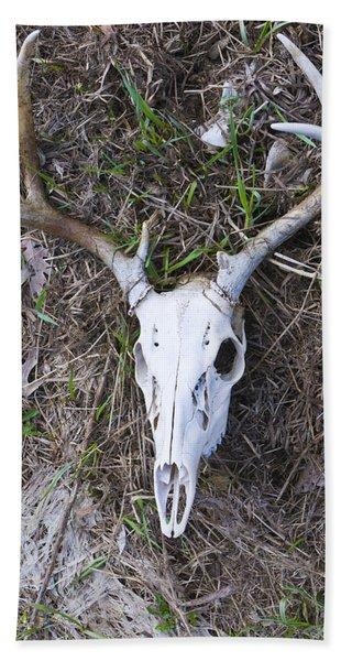 White Deer Skull In Grass Beach Towel