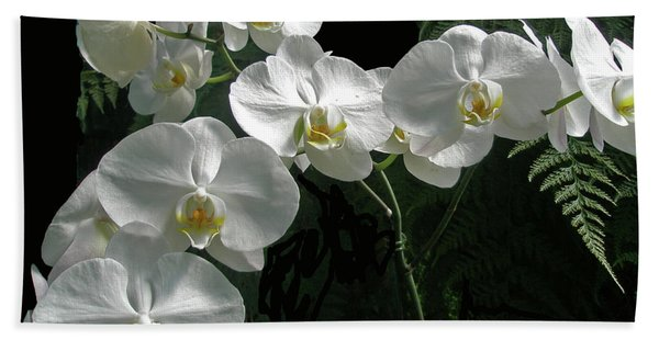 White Moth Orchid Phalaenopsis And Ferns Beach Towel