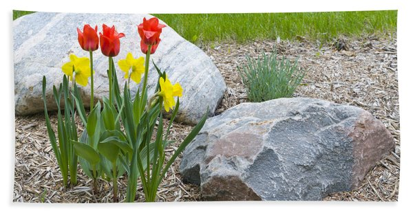 Yellow And Red Tulips With Two Rocks Beach Towel