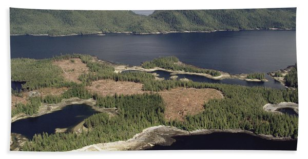 Aerial View Of Clearcut Temperate Beach Towel