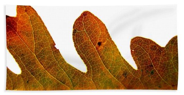 Autumn Leaf Macro Photograph Beach Towel