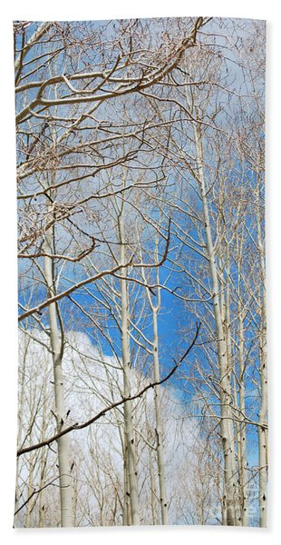 Cloudy Aspen Sky Beach Towel
