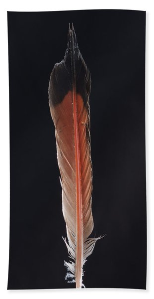 Flick Of A Feather Beach Towel