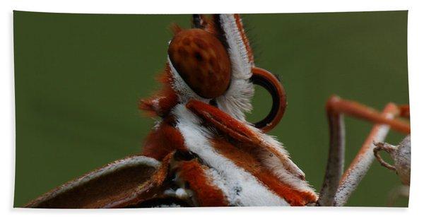 Gulf Fritillary Butterfly Portrait Beach Sheet