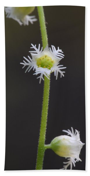 Miterwort Flowers Beach Towel