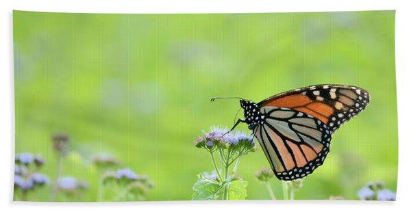 Monarch And Mist Beach Towel