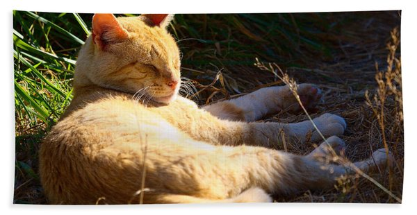 Napping Orange Cat Beach Towel