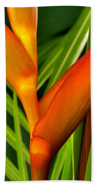 Photograph Of A Parrot Flower Heliconia Beach Sheet