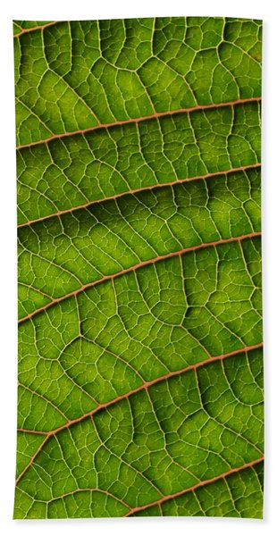 Poinsettia Leaf II Beach Towel