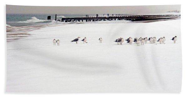 Polar Bird Club Beach Sheet