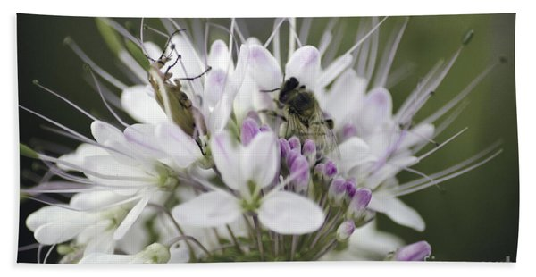 The Beetle And The Bee Beach Towel