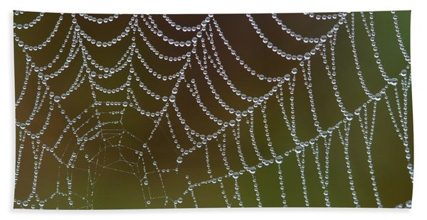 Web With Dew Beach Towel