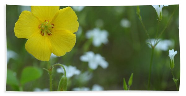 Wood Sorrel And Sandwort Beach Towel