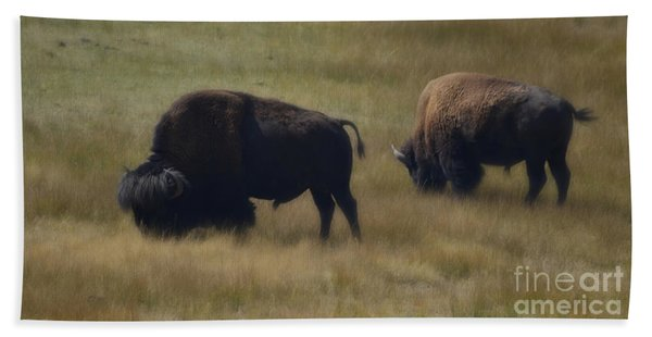 Wyoming Buffalo Beach Towel