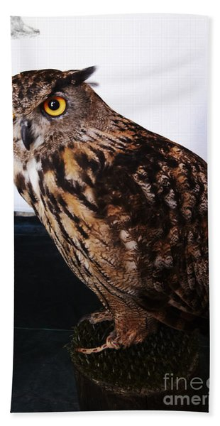 Yellow-eyed Owl Side Beach Towel
