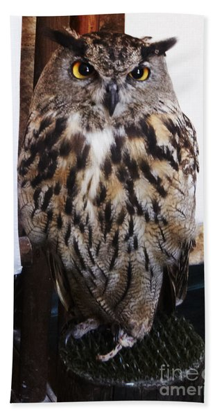 Yellow Owl Eyes Beach Towel