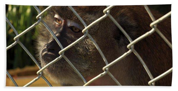 Caged Monkey Beach Towel