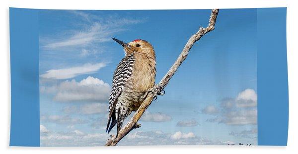 Male Gila Woodpecker Beach Towel