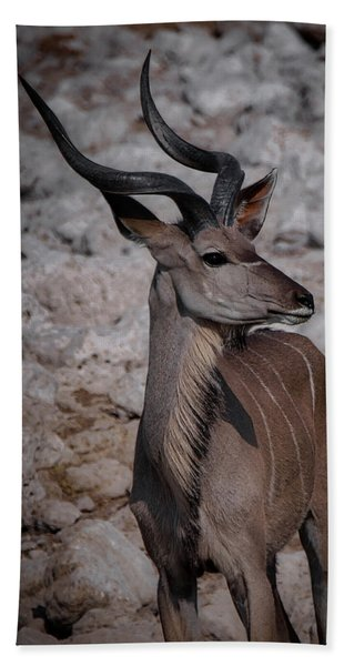The Kudu In Namibia Beach Towel