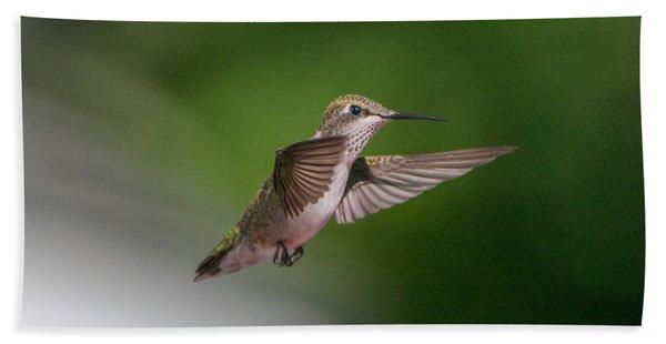 Female Ruby Throated Hummingbird Beach Towel