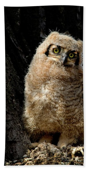 Great Horned Owlet Beach Towel