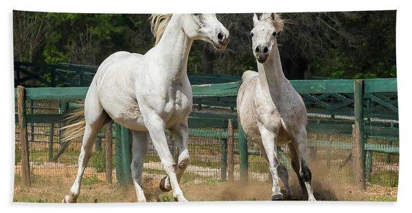 Arabian Horse Beach Towel