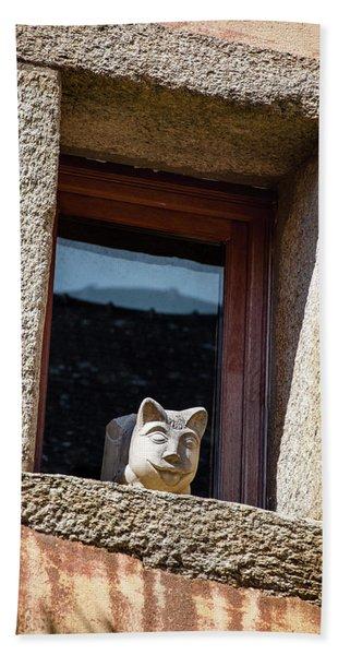 A Cat On Hot Bricks Beach Towel