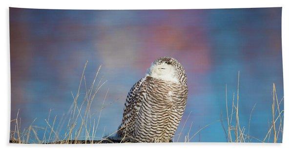 A Colorful Snowy Owl Beach Towel