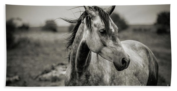 A Horse In Profile In Black And White Beach Towel