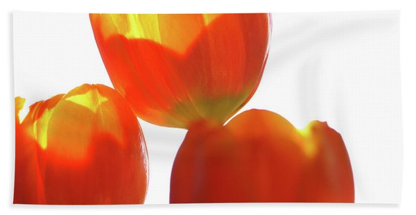 Afternoon Tulips Beach Towel