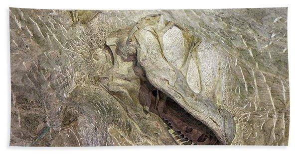 Camarasaurus Beach Towel