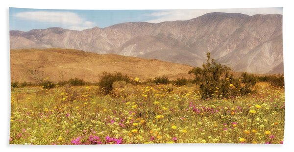 Beach Towel featuring the photograph Anza Borrego Desrt Flowers by Michael Hope