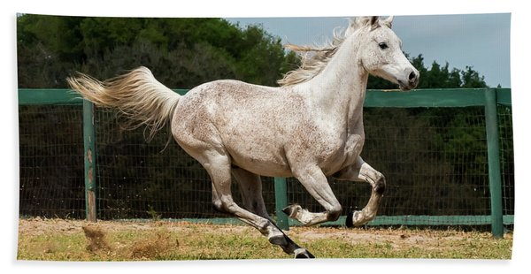 Arabian Horse Running Beach Towel
