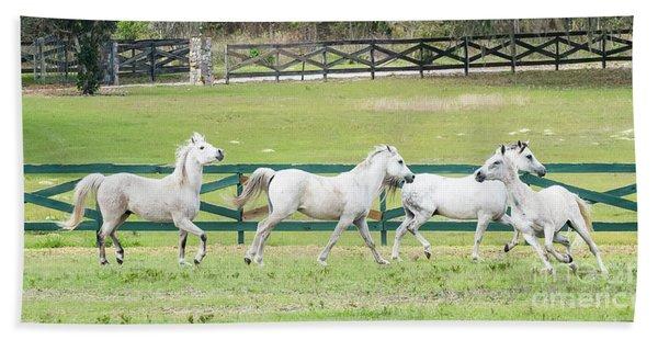 Arabian Horses Beach Towel
