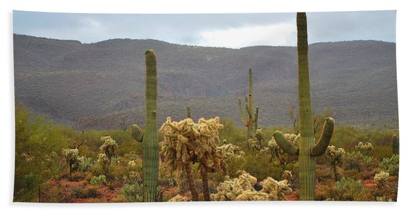 Arizona's Sonoran Desert  Beach Towel