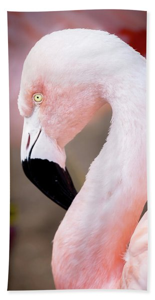 Beach Towel featuring the photograph The Flamingo, Animal Decor, Nursery Decor, Flamingo Gifts, Flamingo Phone Case,  by David Millenheft