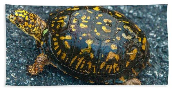 Turtle Beach Towel