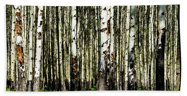 Aspens 1 Beach Towel