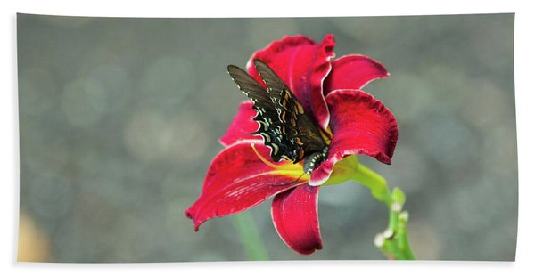 At One With The Orchid 2 Beach Towel