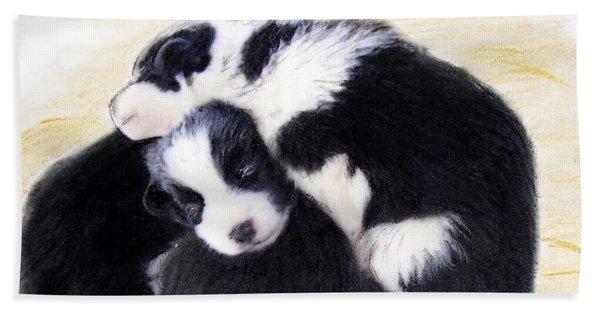 Australian Cattle Dog Puppies Beach Sheet