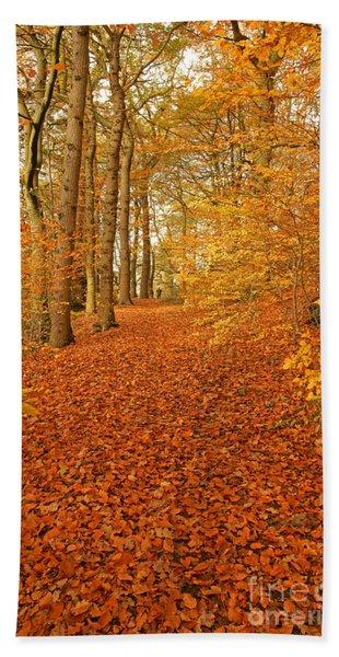 Autumn Woodland In Derbyshire Beach Towel