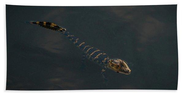 Baby Gator 2 Delray Beach, Florida Beach Towel