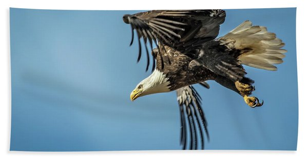 Bald Eagle Flight 1 Beach Towel