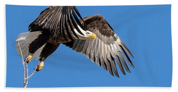 Bald Eagle Flight 3 Beach Towel