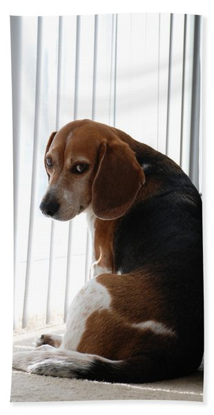 Beagle Attitude Beach Towel